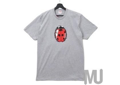 Supreme Ladybug Tee Heather Greyの写真