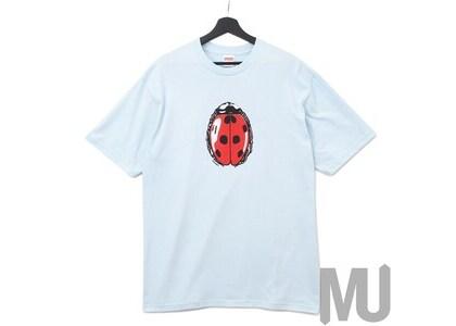 Supreme Ladybug Tee Pale Blueの写真