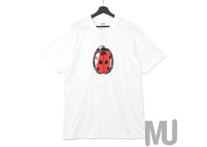Supreme Ladybug Tee Whiteの写真