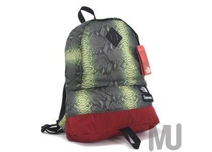 Supreme The North Face Snakeskin Lightweight Day Pack Greenの写真