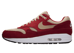 AIR MAX 1 RED CURRY (2018)の写真