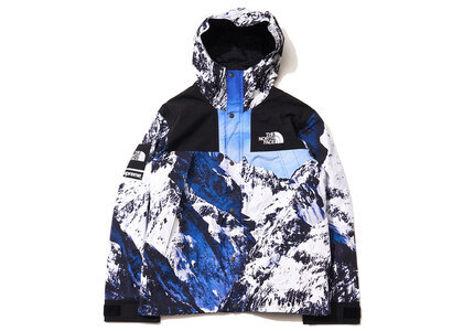 Supreme × The North Face Mountain Parka Blueの写真