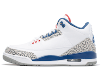 Nike Air Jordan 3 Retro True Blue (2016)の写真
