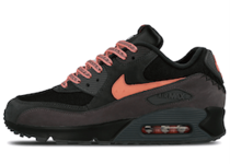 Nike Air Max 90 Mixtape B-Sideの写真