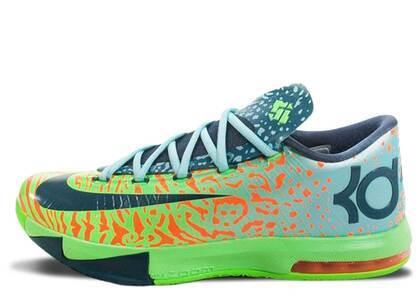 Nike KD 6 Ligerの写真