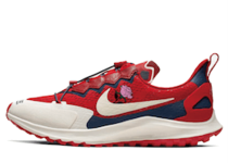 Nike Air Zoom Pegasus 36 Trail Gyakusou Redの写真