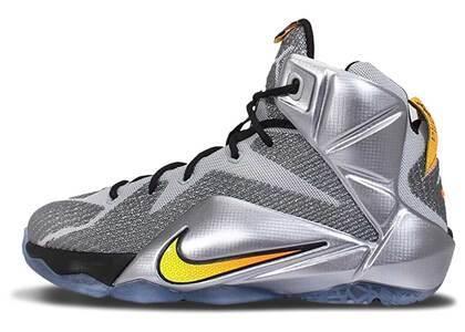 Nike LeBron 12 Flight GSの写真
