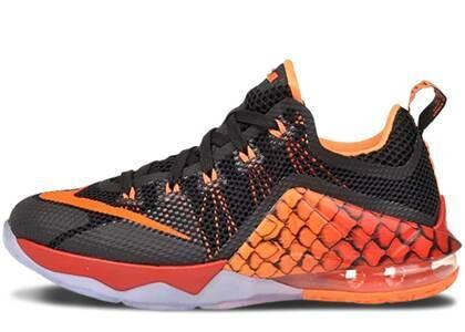 Nike LeBron 12 Low Gone Fishing GSの写真