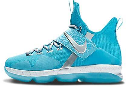 Nike LeBron 14 Ric Flair GSの写真
