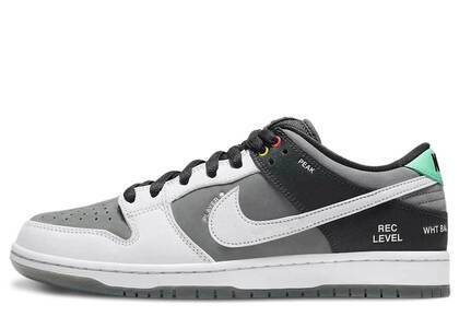 Nike SB Dunk Low Pro ISO Camcorder