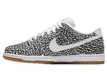 Nike SB Dunk Low Road Packの写真