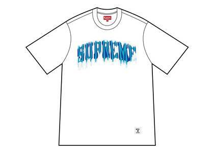 Supreme Blurred Arc S/S Top Whiteの写真
