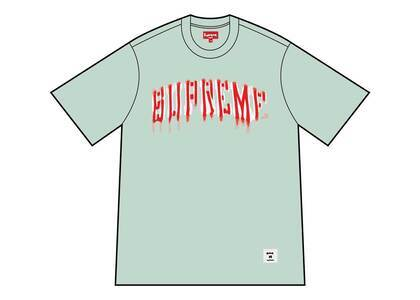 Supreme Blurred Arc S/S Top Pale Greenの写真