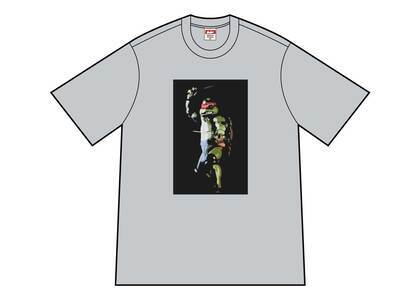 Supreme Raphael Tee Heather Greyの写真