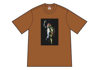 Supreme Raphael Tee Brownの写真