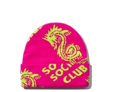 Anti Social Social Club Garden Grove Knit Cap Pink (FW20)の写真