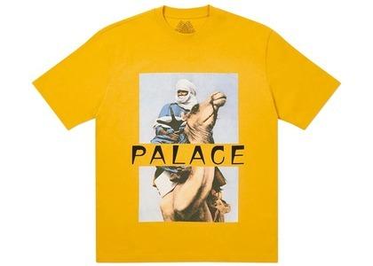 Palace Camel TShirt Camel  (FW20)の写真
