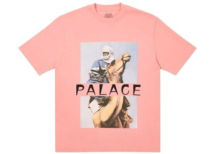 Palace Camel TShirt Pink  (FW20)の写真