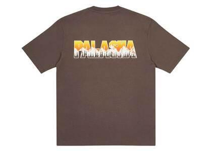 Palace Palaska TShirt Charcoal  (FW20)の写真