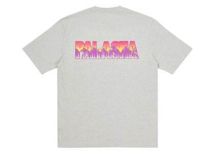 Palace Palaska TShirt Grey Marl  (FW20)の写真