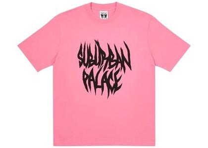 Palace Suburban Bliss Paintbrush TShirt Pink  (FW20)の写真