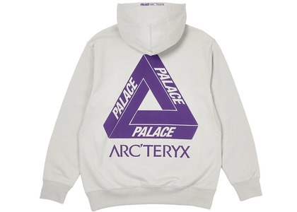 Palace Arc'Teryx Hood Grey  (FW20)の写真