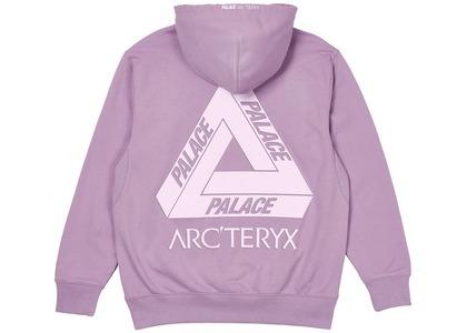 Palace Arc'Teryx Hood Haze  (FW20)の写真