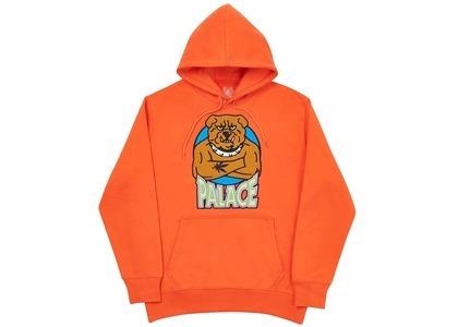 Palace Bulldog Hood Dark Orange  (FW20)の写真