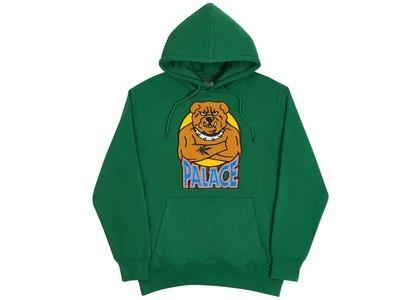 Palace Bulldog Hood Green  (FW20)の写真