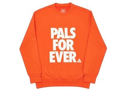 Palace Pals Crew Dark Orange  (FW20)の写真