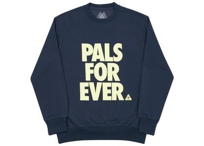 Palace Pals Crew Navy  (FW20)の写真