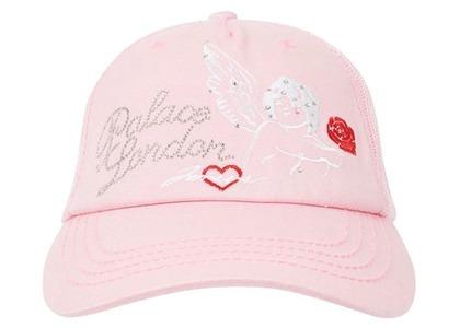 Palace Dirty Trucker Hat Pink  (FW20)の写真