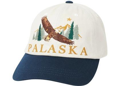 Palace Palaska 6Panel Stone  (FW20)の写真