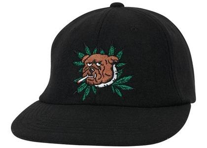 Palace Weed Bulldog Wool 6Panel Black  (FW20)の写真
