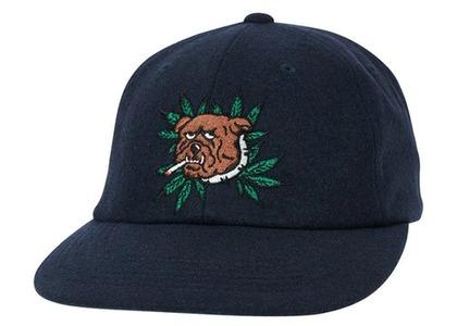Palace Weed Bulldog Wool 6Panel Navy  (FW20)の写真