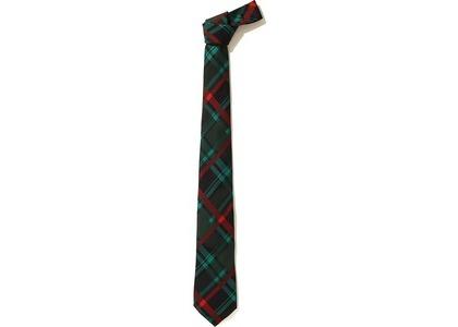 Bape Check Tie Green (FW20)の写真