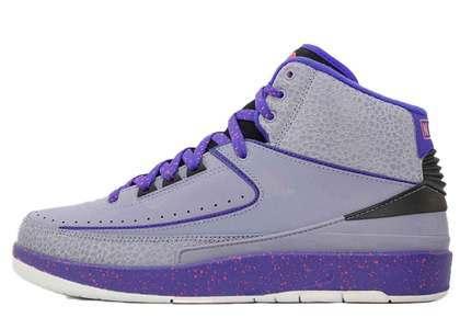 Nike Air Jordan 2 Retro Iron Purpleの写真