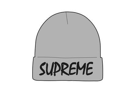 Supreme FTP Beanie Gray (SS21)の写真
