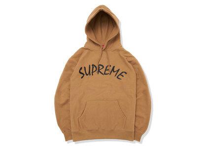 Supreme FTP Arc Hooded Sweatshirt Brown (SS21)の写真