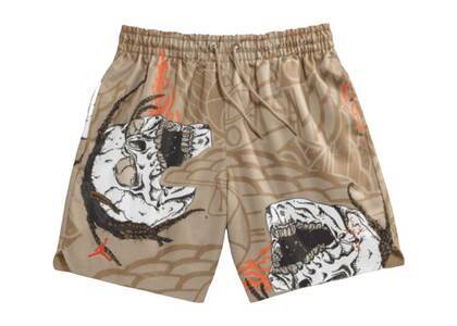 Jordan × Travis Scott Pool Short Pantの写真