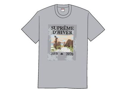 Supreme D'Hiver Tee Heather Greyの写真