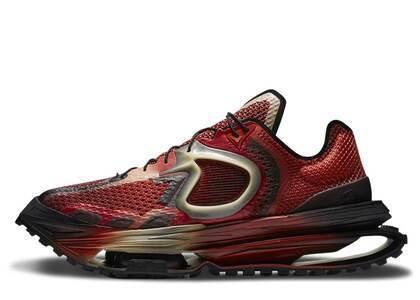 Matthew M Williams × Nike Zoom 4 Rust Factorの写真
