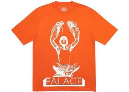 Palace Snakey T-Shirt Red (SS20)の写真