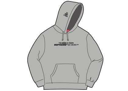 Supreme World Is Yours Hooded Sweatshirt Gray (SS21)の写真