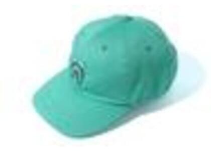 Bape Shark Panel Cap Green (SS20)の写真