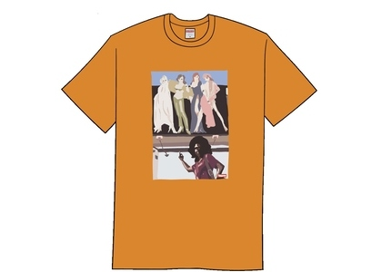 Supreme American Picture Tee Burnt Orangeの写真