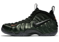 NIKE AIR FOAMPOSITE PRO SEQUOIAの写真