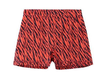 X-Girl Zebra Frill Short Pants Orangeの写真