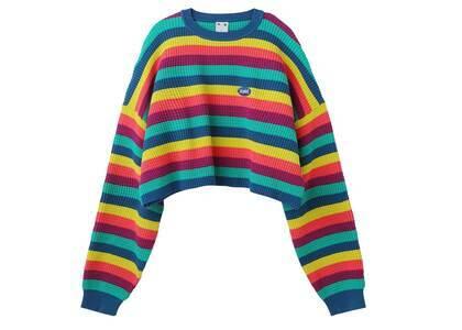 X-Girl Cropped Stripe knit Top Multiの写真