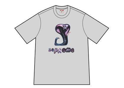 Supreme Snake Tee Gray (SS21)の写真